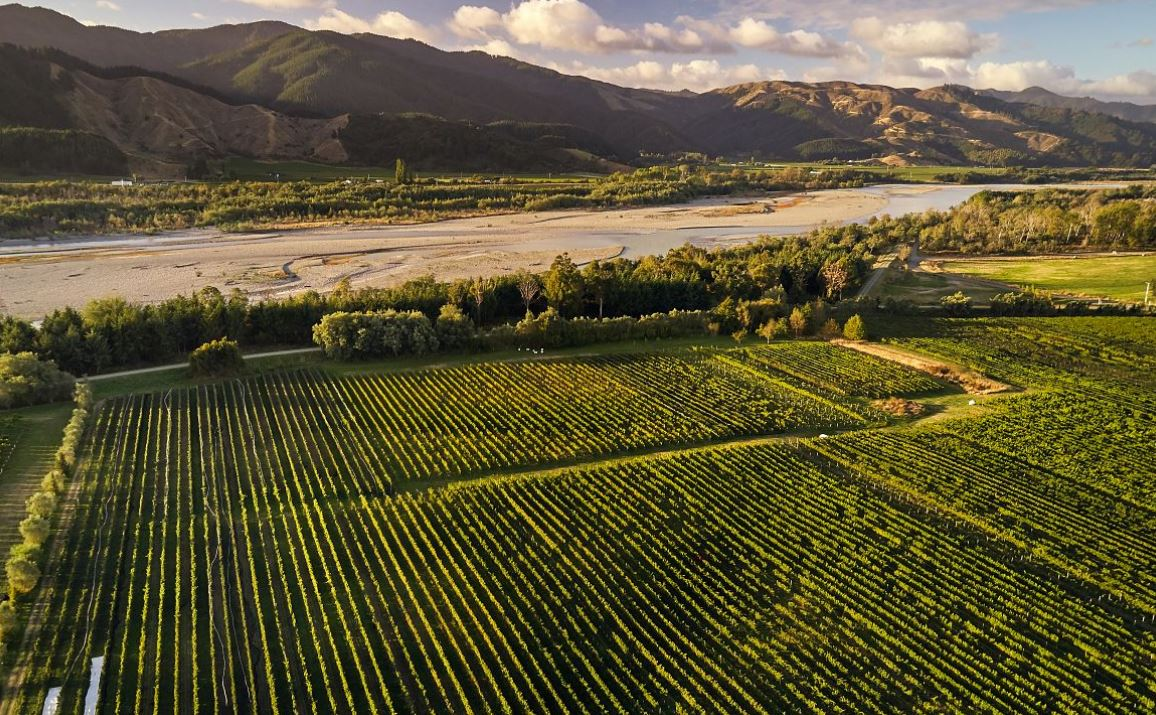 Hans Herzog winery in Marlborough New Zealand