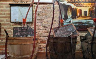 tasting El Vin Del Paron wine venice