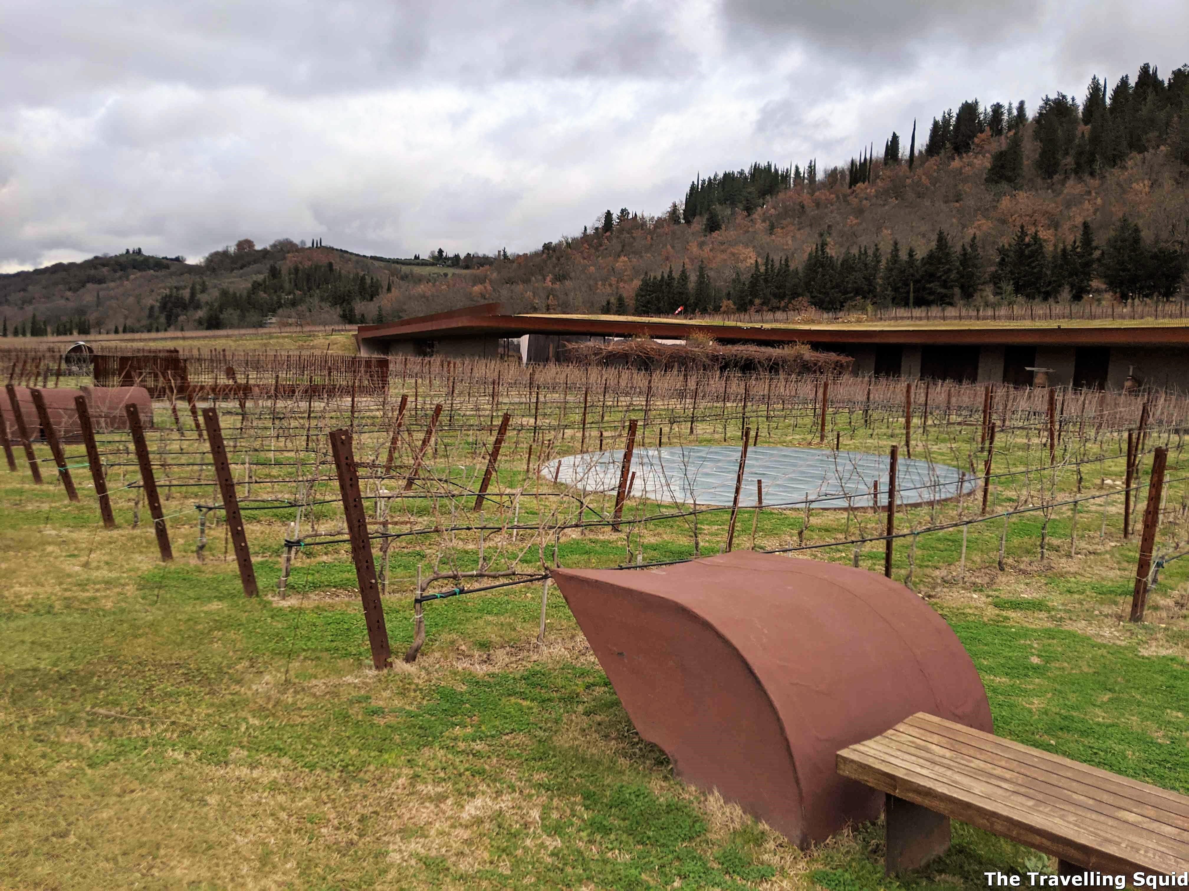 vineyard Antinori nel Chianti Classico