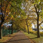 Recommended: A running route along Charles River Esplanade in Boston